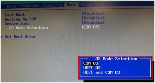 BIOS CSM OS Seleceted